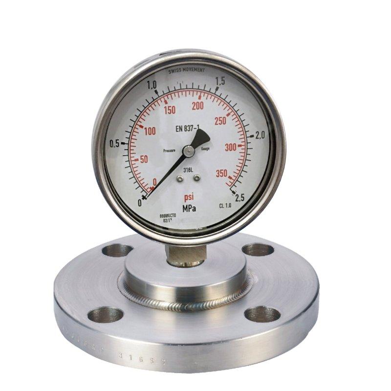 Diaphragm sealed pressure gauge (Flanged type)