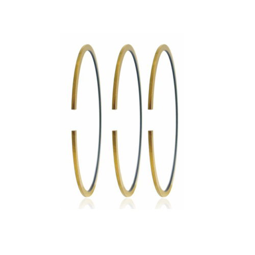 PVD Coated Ring
