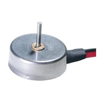 DC Micro Motor