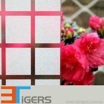 square 36mmx36mm glass film