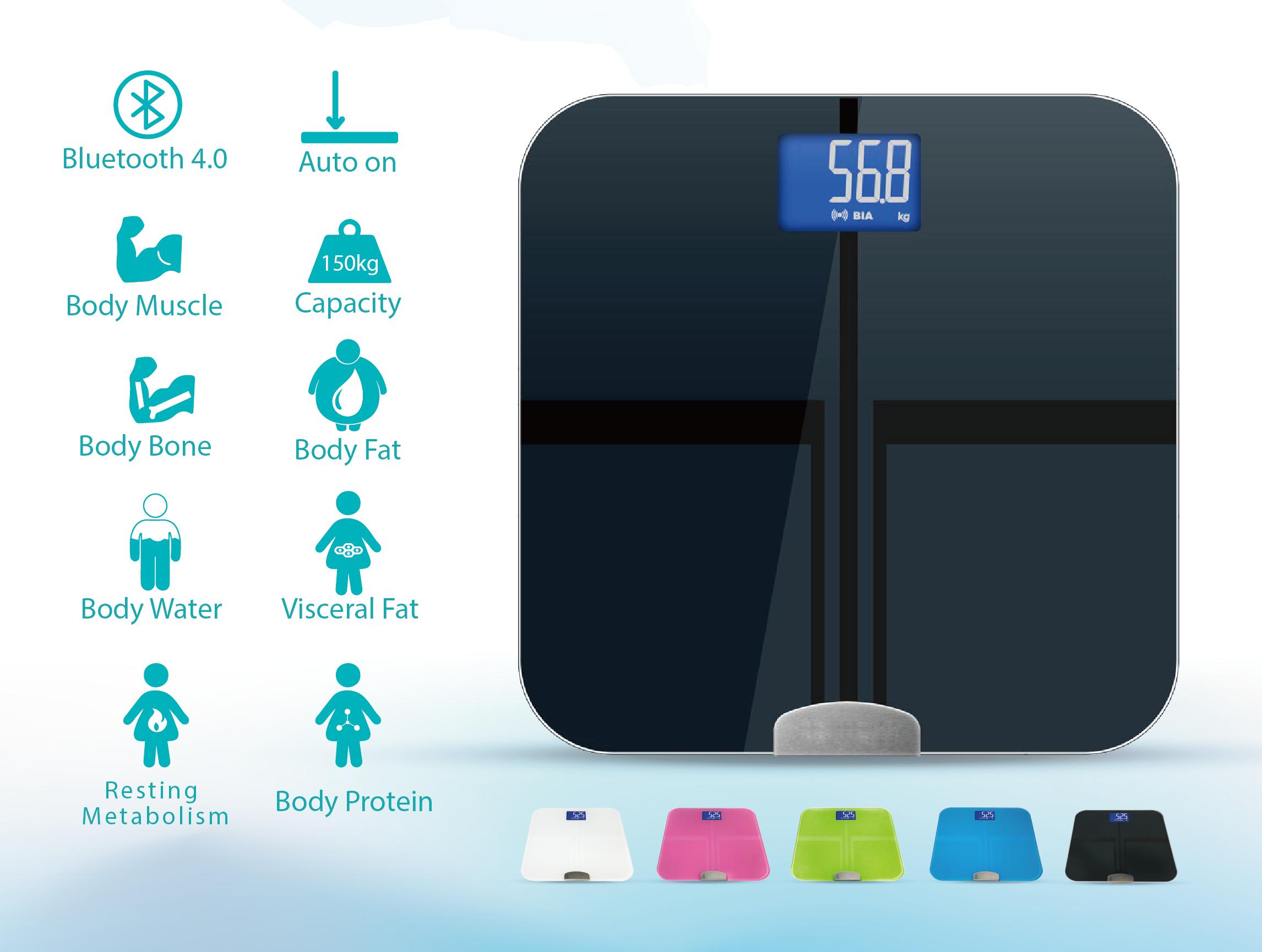 Body Fat Analyzer
